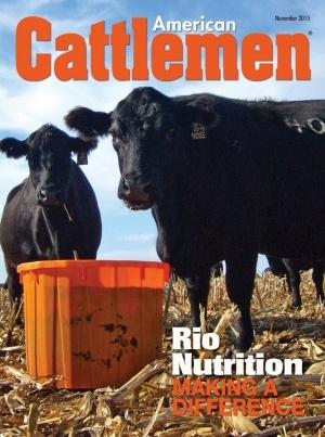 American Cattleman Article