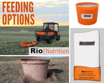 Rio Feeding Options